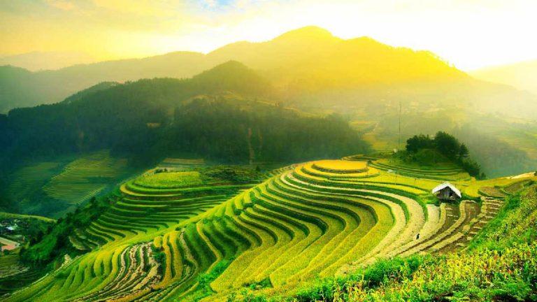 Film Terkenal Indonesia yang Tampilkan Indahnya Alam Tanah Air