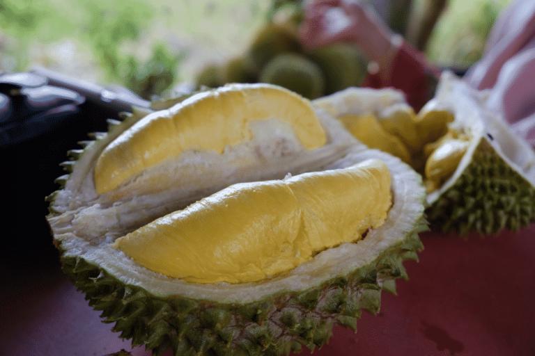 Penyebab Durian Musang King Sangat Populer dan Banyak Dicari