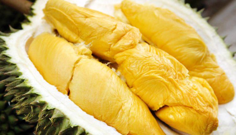 Olahan Durian Musang King Asli Patut Jadi Ide Bisnis
