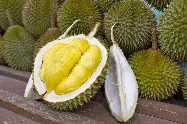 Khasiat Durian Musang King yang Perlu Diketahui