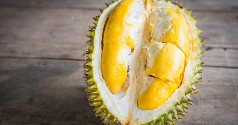 Jenis Durian Termanis Ini Bisa Dijadikan Pilihan
