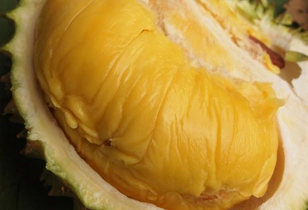 Berikut Ciri Durian Musang King Paling Khas