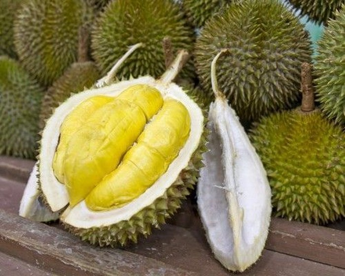 Mengenal Durian Musang King Beserta Keunggulannya